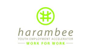 harambee logo 2 - Africa