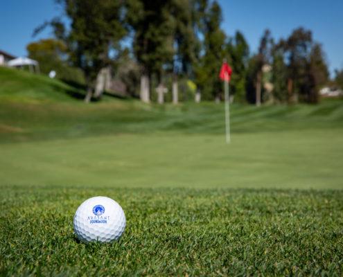 Avasant Golf 2019 9864 web 495x400 - Avasant Foundation Golf For Impact 2019 Album