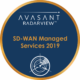 SD WAN Managed Services 2019 Circle 80x80 - RadarView™