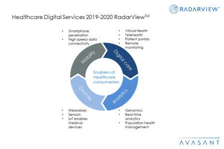 RV Additional Image1 Healthcare2019 2020 450x300 - Healthcare Digital Services 2019-2020 RadarView™