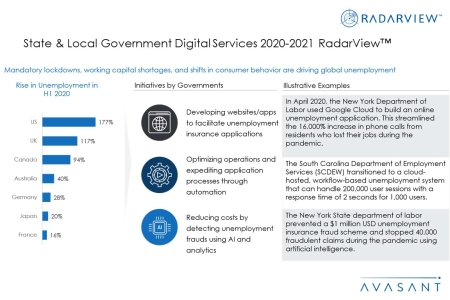 Additional Image3 StateLocalGovtDigitalServices2020 21 450x300 - State & Local Government Digital Services 2020-2021 RadarView™