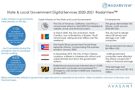 Additional Images4 StateLocalGovtDigitalServices2020 21 450x300 - State & Local Government Digital Services 2020-2021 RadarView™